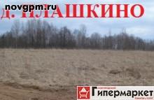 Купить участок 14 соток в Плашкино
